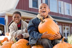 Fun Fall Things to do in Champaign IL